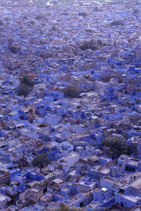 Jodhpur is often called the Blue City for obvious reasons, but what isn't so clear is why all the homes in the old section are painted this color. Some say it keeps the houses cool, others claim it keeps the mosquitoes away, and still others say it is because it is the color of the Brahmins.