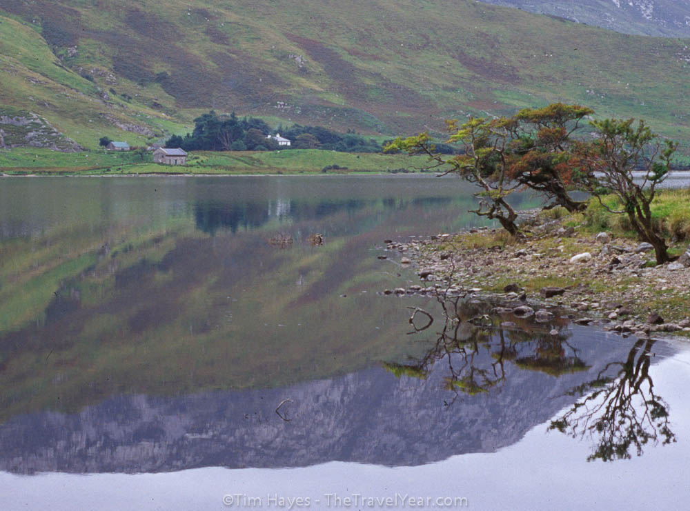 The image of a mountain and a group of trees reflects from the surface of a lake in the Connemara area of County Galway, near the Kylemore Abbey.