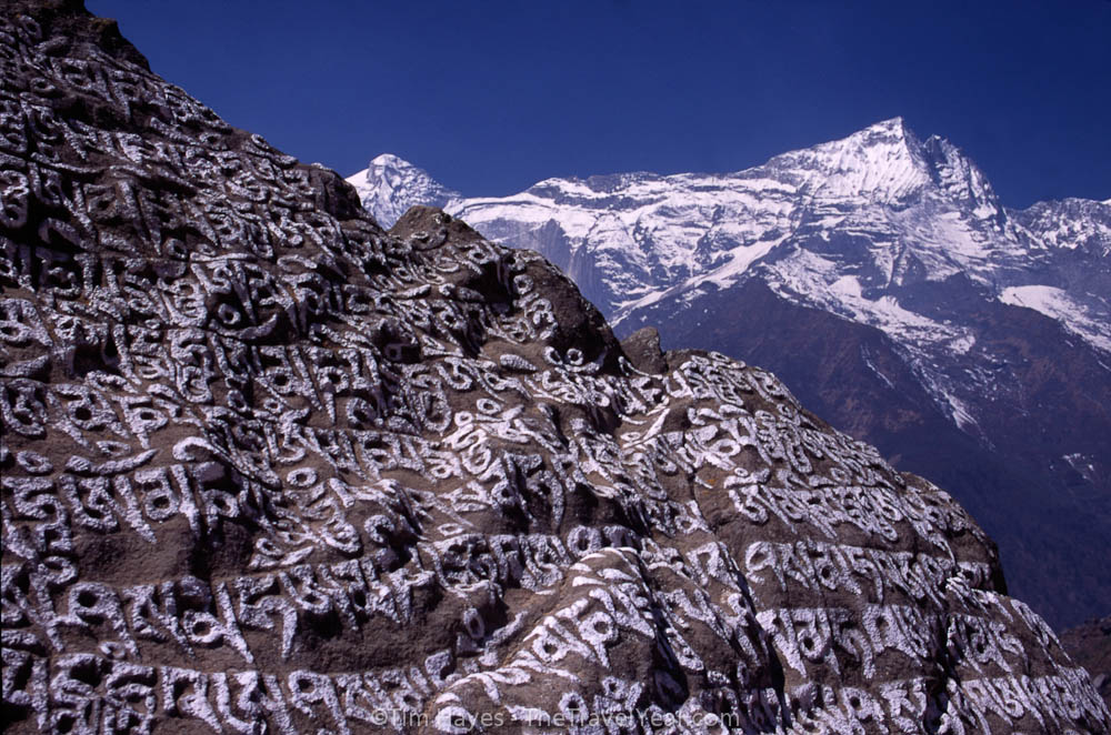 Prayer stones carved along paths in Nepal are thought to release blessings of compassion to those who walk by.
