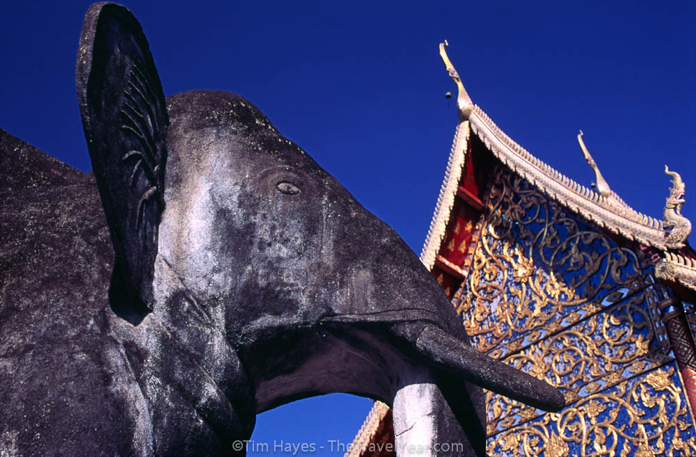 An elephant stands watch over Wat Chiang Man, the oldest Buddhist temple in Chiang Mai - built in 1296.
